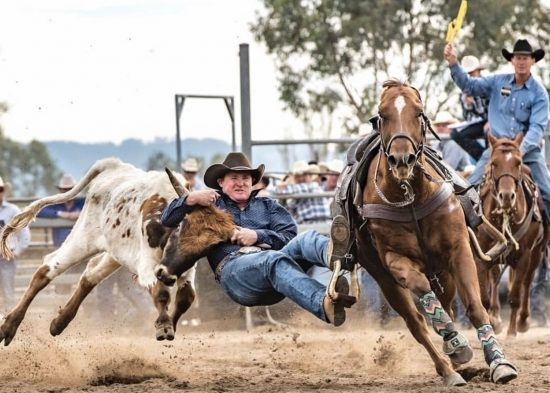 What's On in the Upper Hunter - Scone Horse Festival