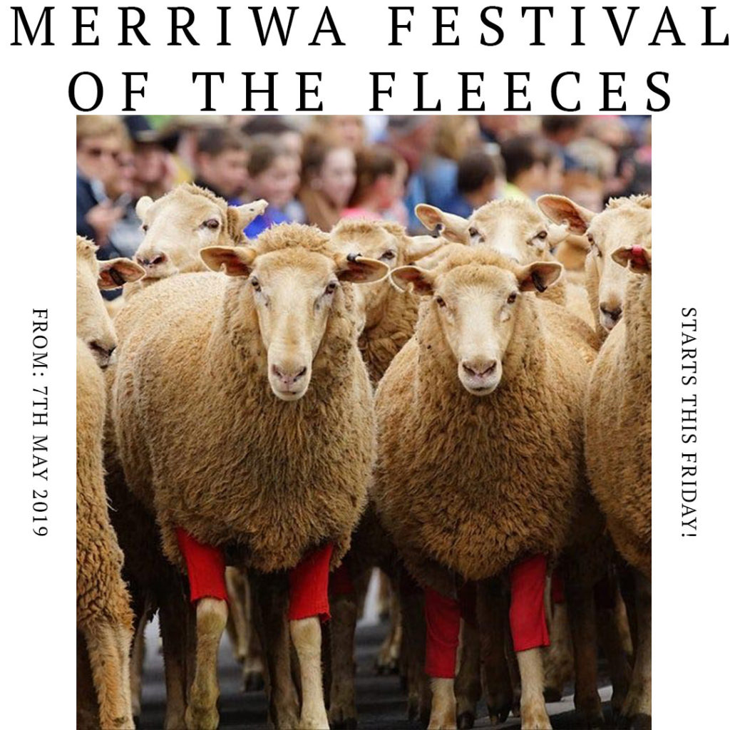 What's On in the Upper Hunter - Festival of the Fleeces Merriwa - Events